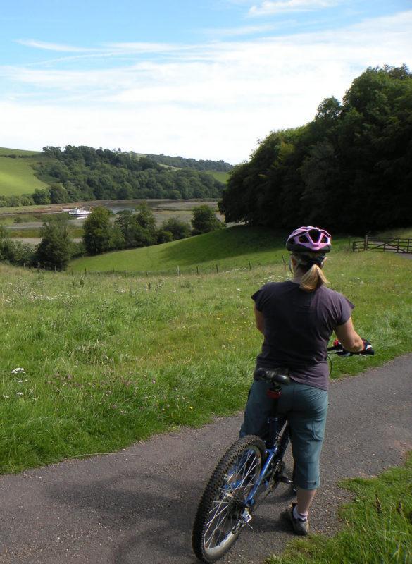 Hire Bikes - Totnes, South Devon